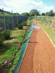 Barrier erected to protect Western Leopard Toads in Noordhoek